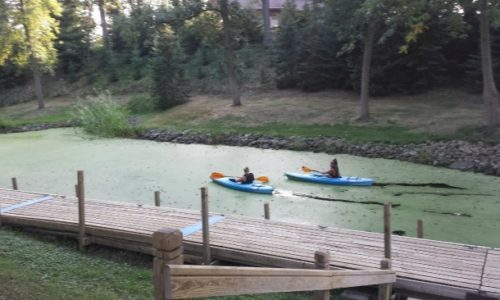 Kayaks in the lagoon at Cozy Corner Cottages